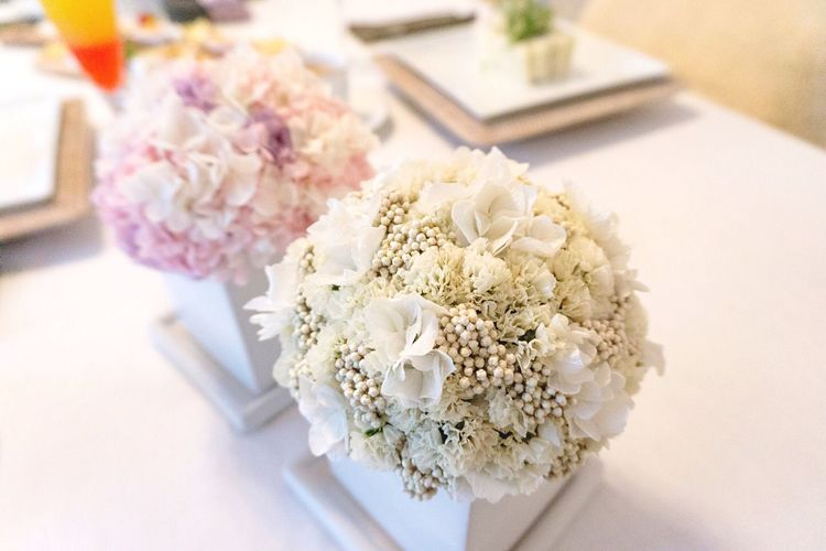 Pastel Power Flower Flowers White Flower Pink Flower Hydrangea Pink Home Interior