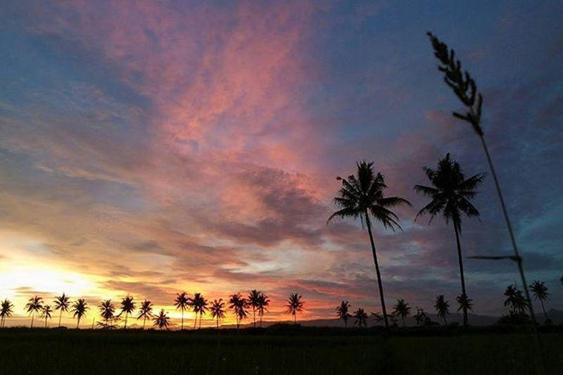 Dusun Pedaran Moyudan Sleman // 06.02.2016 // 18.12PM . Ngene👍
