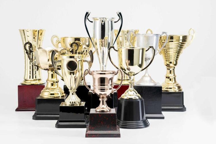 Variety of Trophy Cup on white background Still Life Trophy AWARD Success Winning No People Studio Shot Indoors  Achievement Medal Metal Shiny Variation Choice Gold Colored White Background Collection Competition Arrangement Large Group Of Objects Silver Colored