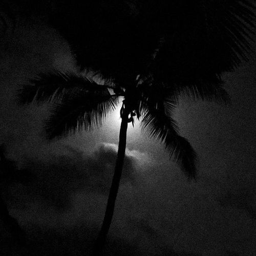 Oneplusone Photograph Nofilter Night Beneath The Stars