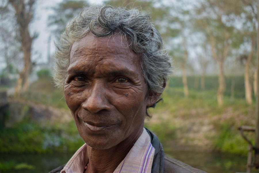 Close-up Gray Hair Hard Worker Human Face Looking At Camera Old People, Man People Portrait Retirement Senior Adult Tea Garden Worker Wisdom