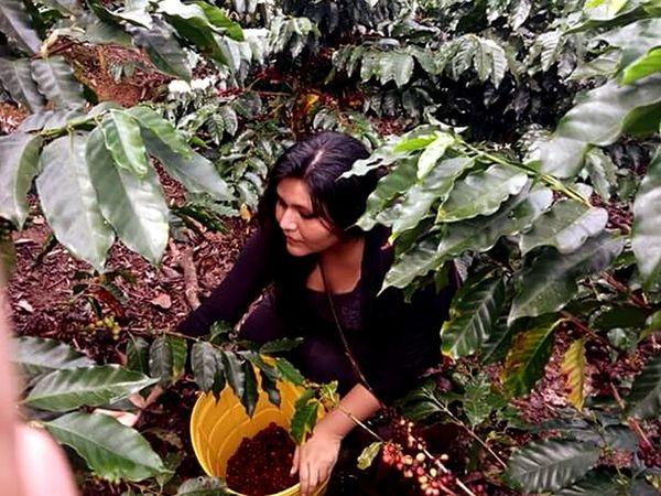 Satipo Peruvian Girl Peruvianjungle Nature Coffeebeans Outdoor Perú ❤ Cafetales EyeEm Nature Lover EyeEmNewHere Trips