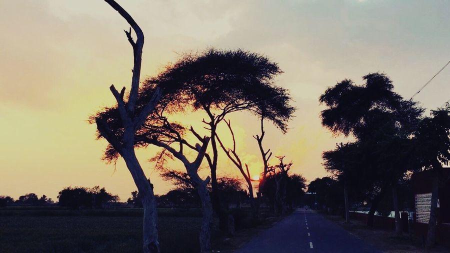 Sunset ⛅️ First Eyeem Photo