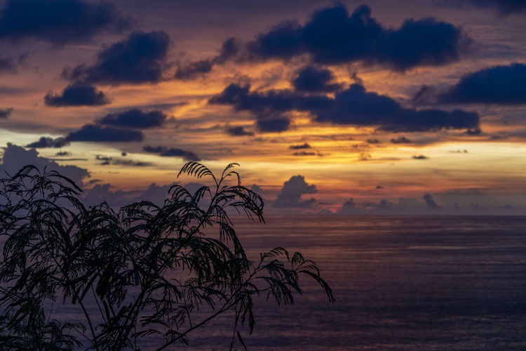 Silhouette tree by sea against romantic sky at sunset
