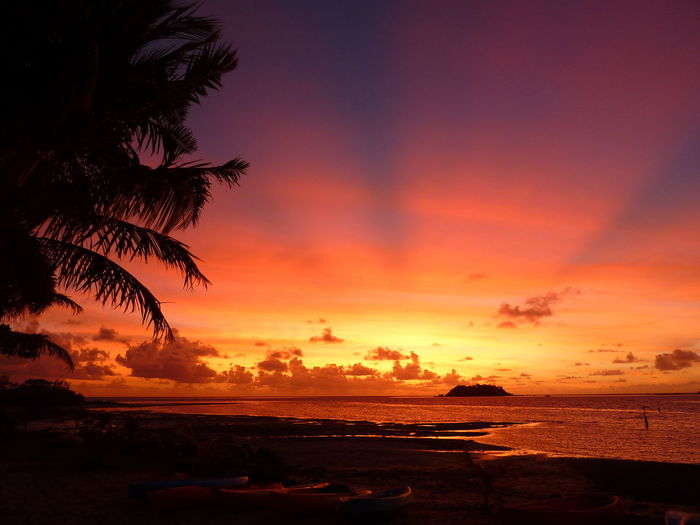 Fiji Tropical Paradise Tropical Island Sky Sunset Sea Water Scenics - Nature Beauty In Nature Cloud - Sky Tranquility Tranquil Scene Horizon Horizon Over Water Orange Color Tropical Climate Nature Beach Land Silhouette No People Idyllic Outdoors Romantic Sky Coconut Palm Tree