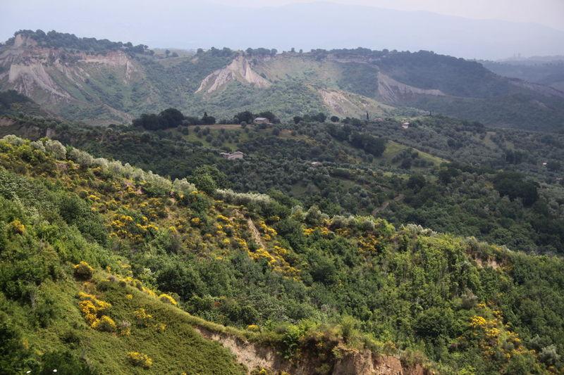 Civita Di Bagnoregio Day Geology Green Color Hill Italy Landscape Lazio Nature Non-urban Scene Outdoors Scenics Tree