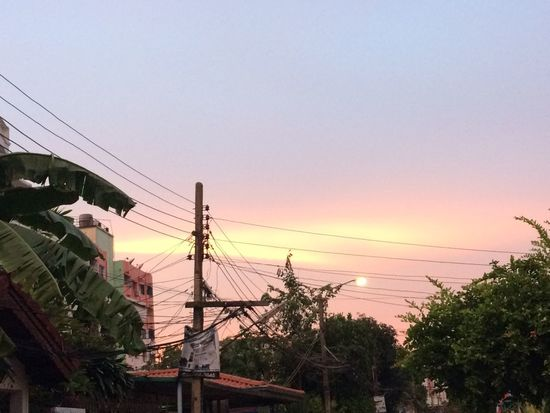 Sky Sunset Plant Nature Tree Copy Space Architecture Clear Sky No People Outdoors Beauty In Nature Cable Silhouette