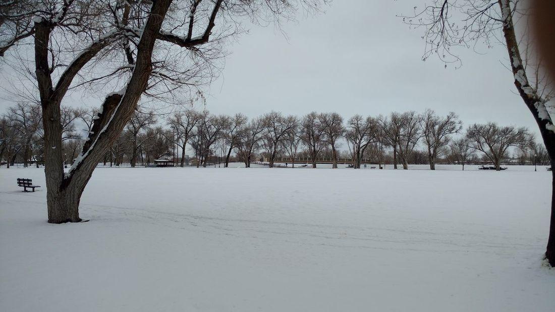 springtime in Alamosa Colorado. Snow covered park Taking Photos
