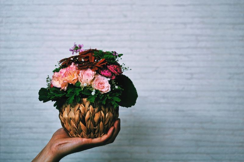 Cropped hand of man holding flowers against wall