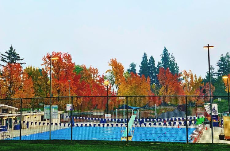 """""""Closed For The Season"""" A local public swimming pool is closed for the season left to the Autumn colors surrounding it. Public Pool Fall Colors Fall Beauty Fall Autumn Collection Autumn Autumn colors Local Park Public Park Nature Day No People Autumn Multi Colored Park Swimming Pool"""