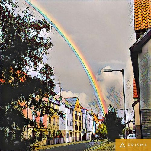 A mosaic of the beautiful rainbow I saw when walking to work in the morning. Outdoors Low Angle View Horizontal City Tree Cloud - Sky No People Sky Day rainbow landscapes