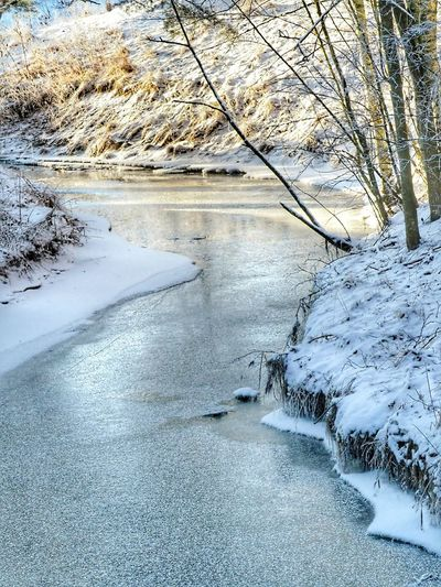 Cold Weather Naturephotography Iced Winter Nature Day Frozen Nature Iced Water Iced River ❄ Iced River Beautiful Nature Frozen Plant Snow Covered Nature Beauty In Nature Day Water Cold Temperature Outdoors Scenics Tranquility No People Tranquil Scene Winter Lake Snow Landscape Sky Tree