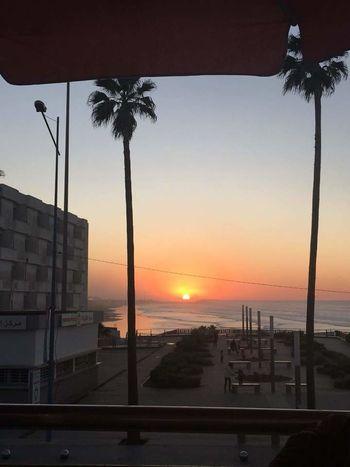 kazablanka morocco Sky Full View Sun So High EyeEm Best Shots EyeEmNewHere EyeEm Nature Lover Sunset Palm Tree Beach Sea