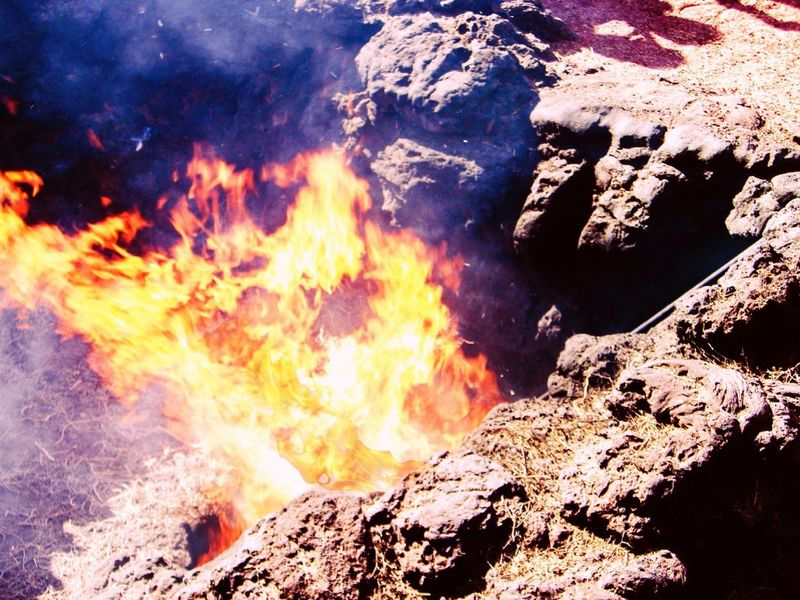 Timanfaya Heat - Temperature Demonstration Burning Burning Hay Tourist Attraction  Volcano Canary Islands Lanzarote Day Holiday Outdoors No People