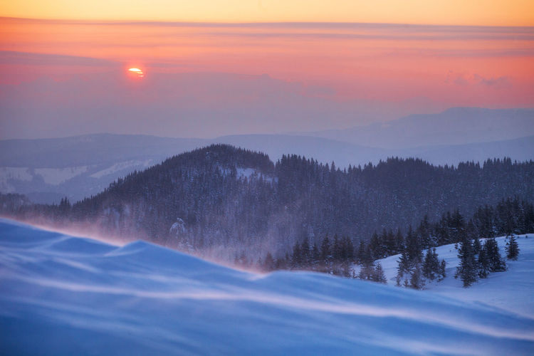 Winter landscapes in a perfect light from Ciucas Mountains, Romania. Beautiful Fairytale  Ice Light Nature Travel Winter Background Beauty In Nature Blue Cold Cold Temperature Forest Idyllic Landscape Mountain Outdoor Pine Tree Scenics Sky Snow Sunrise Vacation White Windy
