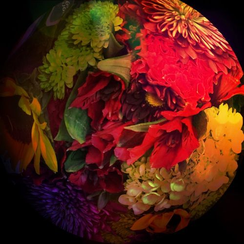 A sphere of floral beauty For My Friends That Connect Tadaa Friends NEM Abstracts Check This Out CreativePhotographer Streamzoofamily Flowerlovers Remembering Tallulah No Edit No Fun Flowers_collection