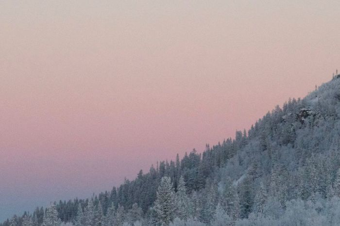 Winter morning Shades Of Winter Landscape Morning Dawn Nature Trees Mountains And Sky Pink Vemdalen Geometry In Nature Composition