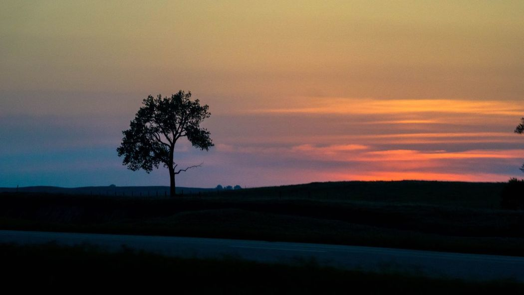Sunset Tree Sky Scenics - Nature Tranquil Scene Beauty In Nature Silhouette Cloud - Sky Tranquility Landscape Nature
