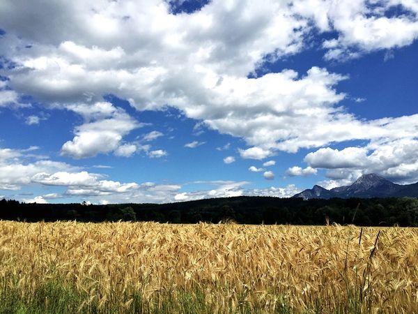 Villach Austria IPhoneography EyeEm Best Shots Landscape EyeEm Nature Lover EyeEm Best Shots - Nature Nature Field Skyscape