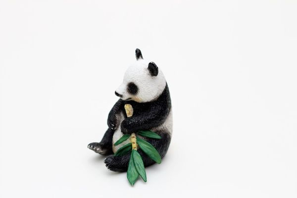 Schleichtiere Panda Childrens Toys Hartgummi Spielzeug Schleich Schleich Animals Schleich Tiere Schleichtiere Schleichtiere Panda Schleichtiere Spielzeug Schleichtiere Toys Spielzeug Spielzeug Tiere Spielzeugfiguren Spielzeugfotografie Spielzeugtiere Toyphotography Toys