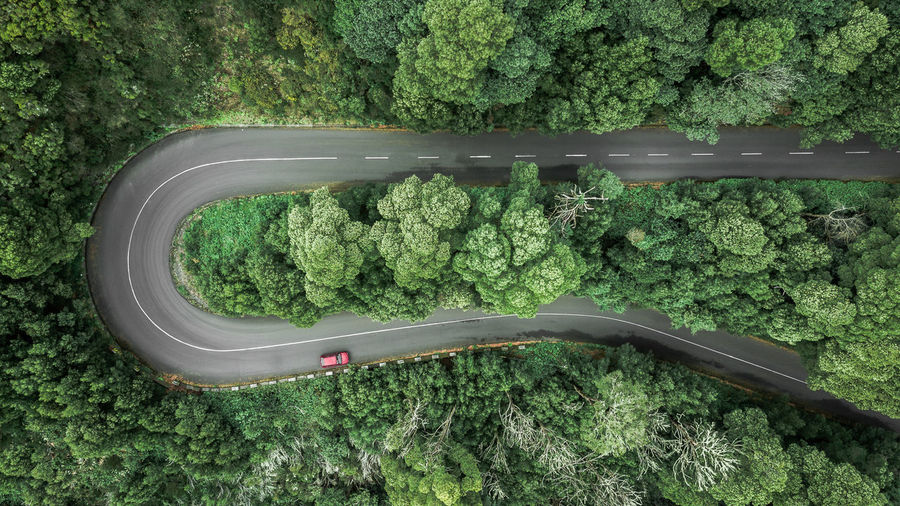 Aerial view of curve road with unrecognizable car trough the dense woods on the high mountain Road Road Trip Drone  Drone Photography DJI Mavic Pro DJI X Eyeem Forest Nature High Angle View Above Above View Top View Top Perspective Aerial View Aerial Photography Aerial Shot Aerial Landscape Encumeada Drone Point Of View Madeira Island Street Outdoors Adventure Tourism Tourist Tourist Attraction  Tourist Destination Journey Winding Road Europe Curve Scenics Scenics - Nature Vacations Travel Destinations Pine Tree Fir Tree WoodLand Hill Springtime Spring Directly Above Cars Beauty In Nature Environment