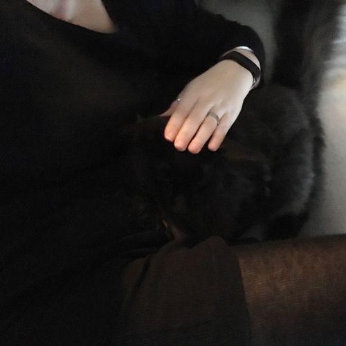 Schwarze Katze auf schwarzem Grund. #Katzinis Black On Black Cat Human Body Part Hand Human Hand One Person Adult Indoors  Body Part Black Color Close-up Black Background Women Dark