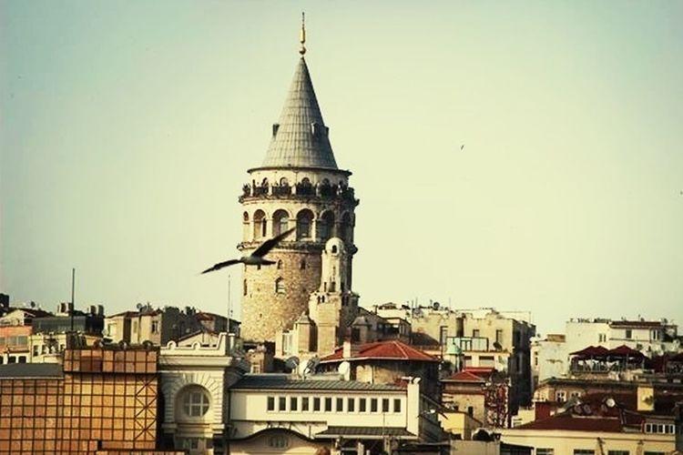 Istanbul Galata Kulesi Marti Benimgordugum