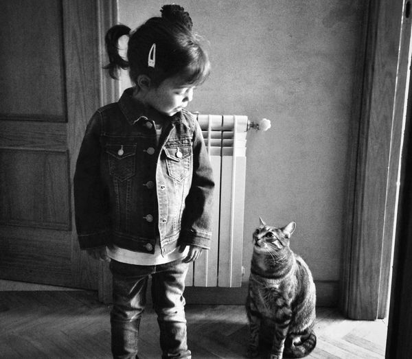 Child And Tabby Cat Indoors