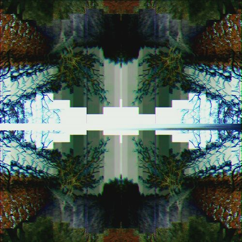 Reflection Symmetry Pattern Sky Tree Nature Connection Digitally Generated Backgrounds Water No People Outdoors Day Glitchart Psychedelic Art Artphoto