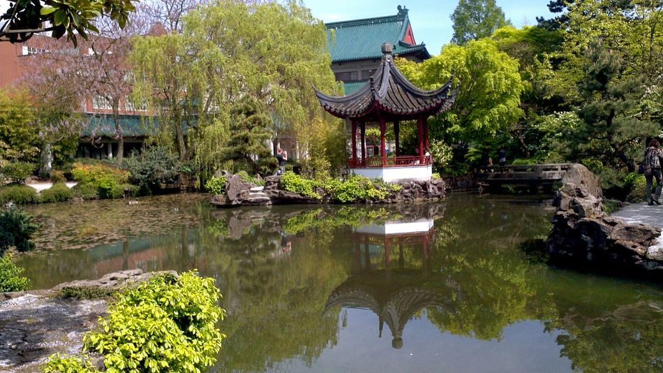 Water Tree Architecture Religion Cultures Outdoors Built Structure Day Building Exterior No People Roof Travel Destinations Nature Chinese Chinese Garden