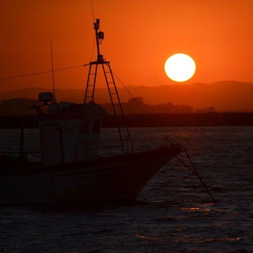 Orange... No filter... xoxo The Purist (no Edit, No Filter) EyeEm Best Shots EyeEm Best Shots - No Edit EyeEm Best Shots - Sunsets + Sunrise