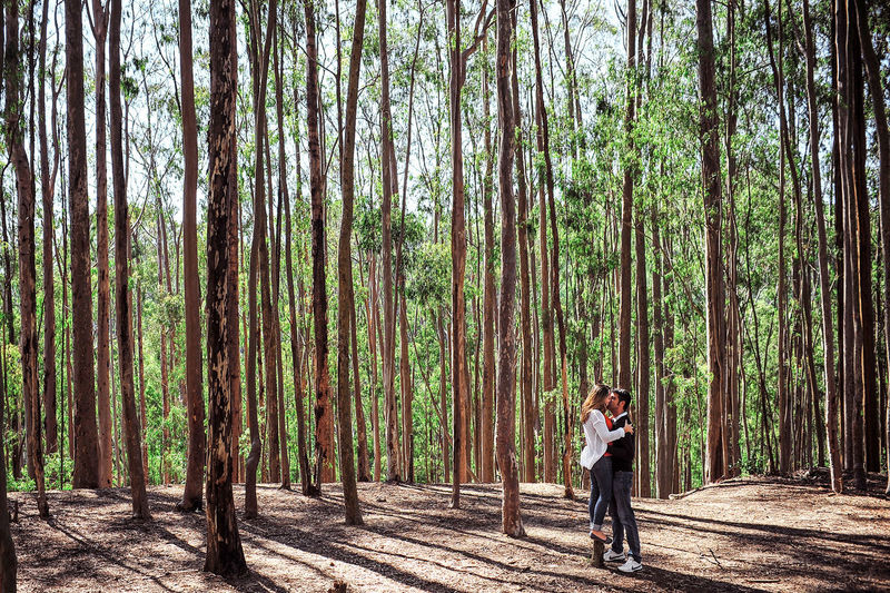 Full length of couple kissing against trees at forest