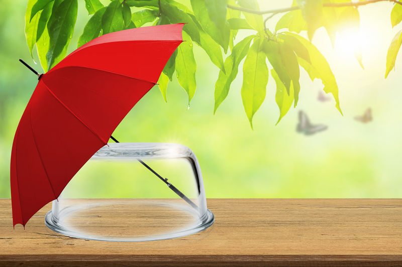Protection insurance, Empty transparent glass dome and red umbrella on wooden floor with blurred natural background, Blank space for product display and presentation, Concept of insurance. Insurance Umbrella Red Protect Background White Protection Concept Safety Security Black BIG Agent Data Life Rain People Protective Symbol Health Home House Care Dome Glass Safe Transparent Space Case Display Container Cover Conservation Save Bell Weather Design Template Presentation Natural Exhibition Shield Mock-up Prevention Safeguard Idea Family Car Storm Help