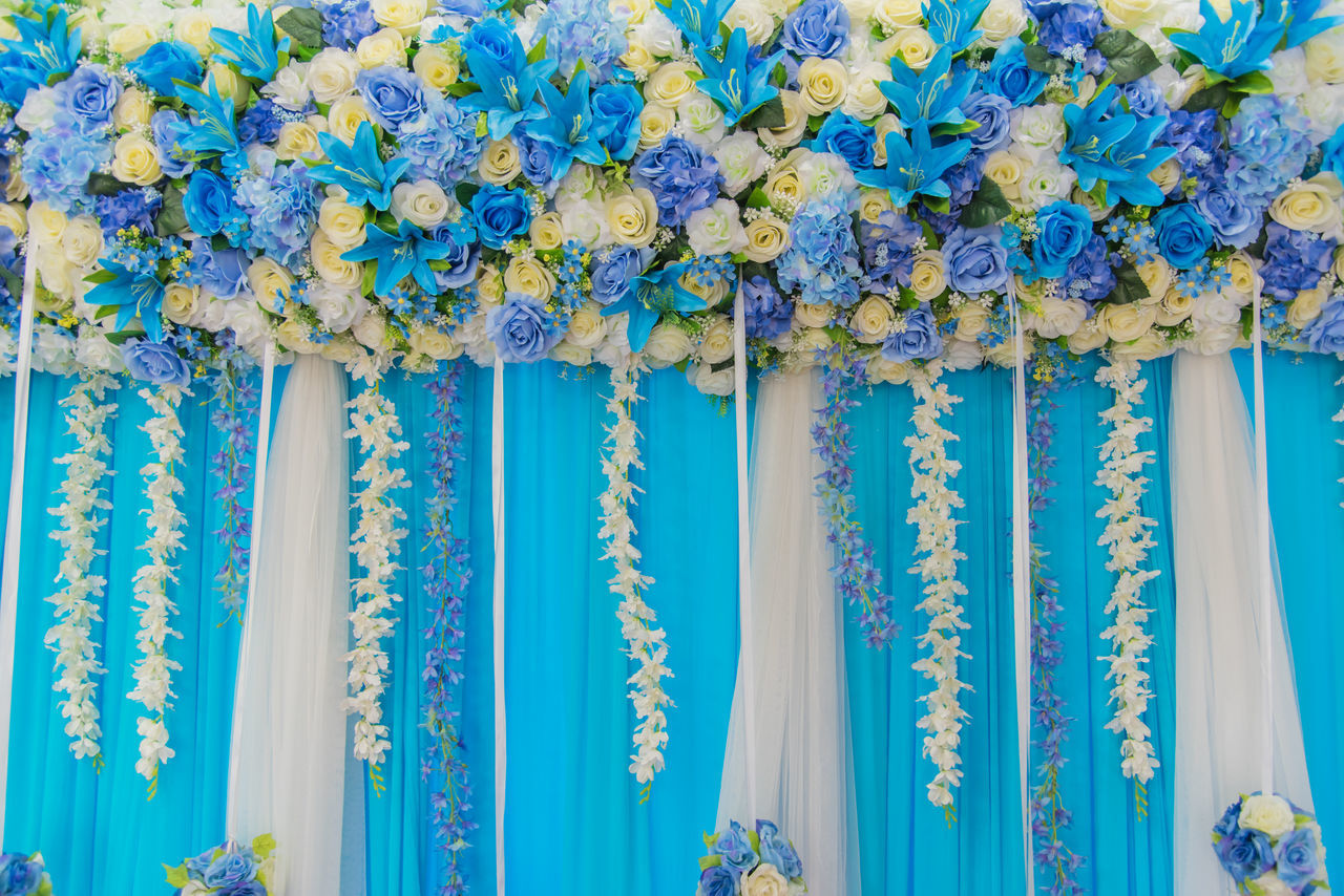 no people, blue, close-up, for sale, flower, day, hanging, curtain, indoors, freshness, fragility, beauty in nature