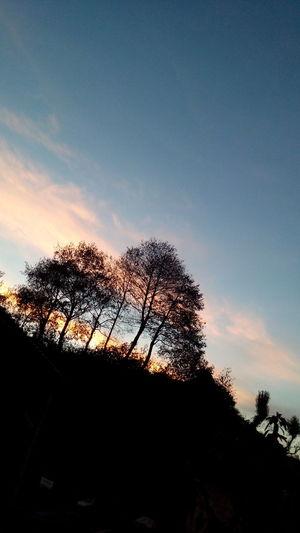 Naturaleza ❤🌸🌹 Relaxing Day Pretty Nice