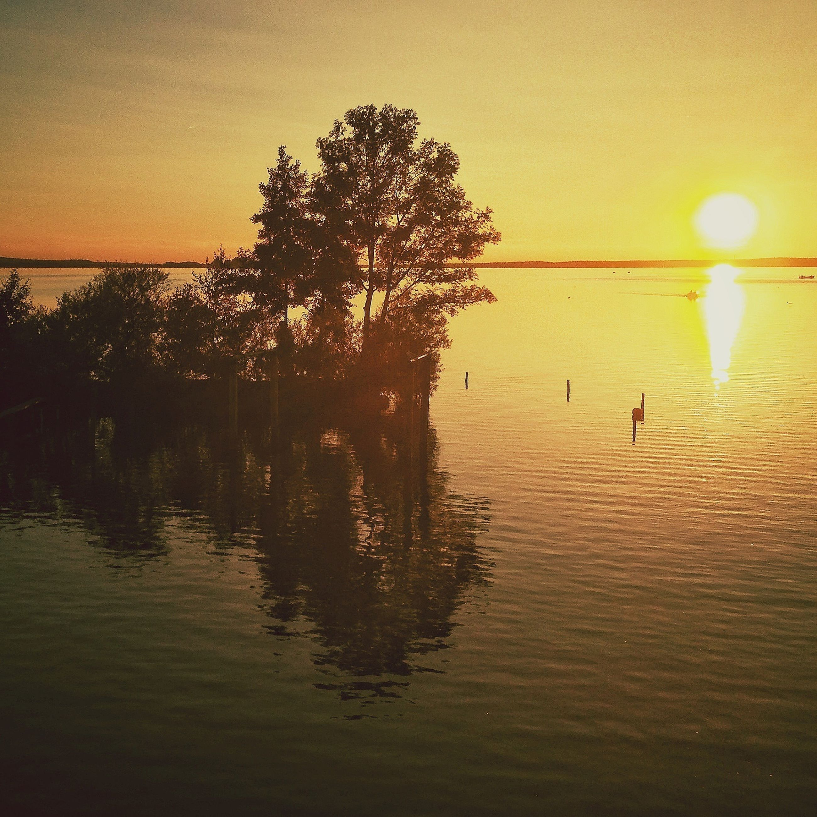 sunset, water, tranquil scene, sun, tree, tranquility, scenics, silhouette, beauty in nature, sea, reflection, nature, sky, idyllic, lake, waterfront, clear sky, orange color, sunlight, rippled