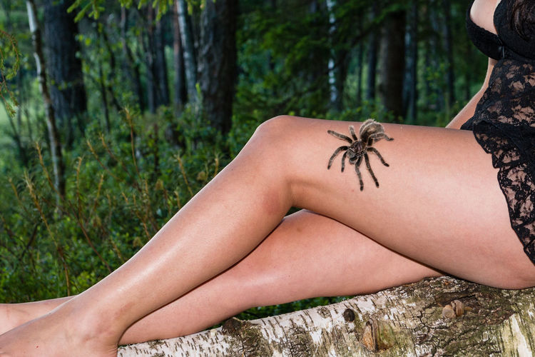 Rear view of woman with spider