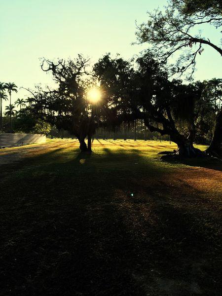 Sunset 😎 Sunset Sunlovers First Eyeem Photo