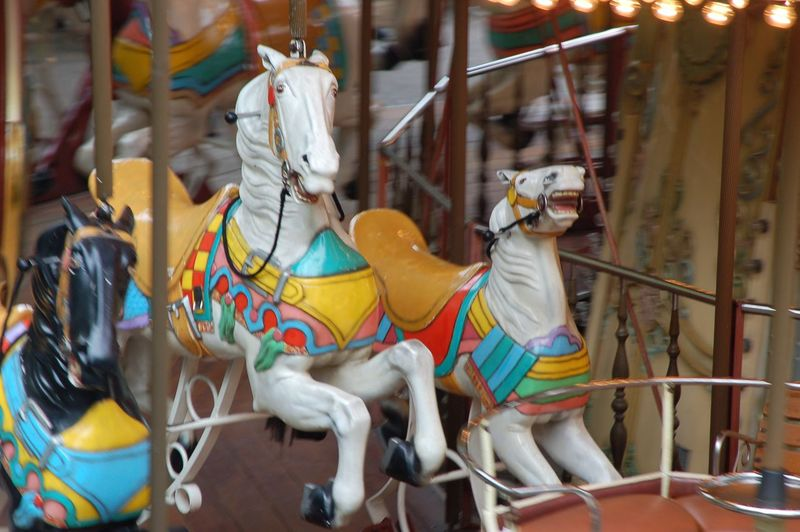 Carouselle Animal Representation Domestic Animals Domestic Mammal Livestock Arts Culture And Entertainment Adventures In The City Carousel Amusement Park Carousel Horses Outdoors No People Art And Craft Amusement Park Ride Horse Day Animal Animal Themes Adventures In The City Adventures In The City
