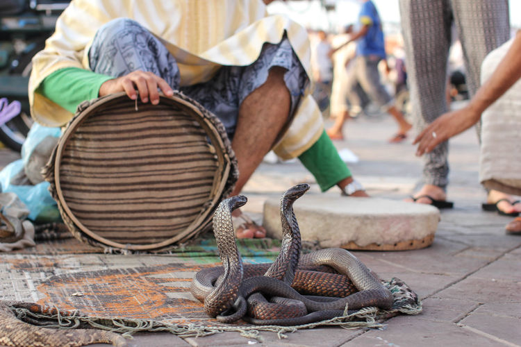 Charmer with basket sitting by snakes on street