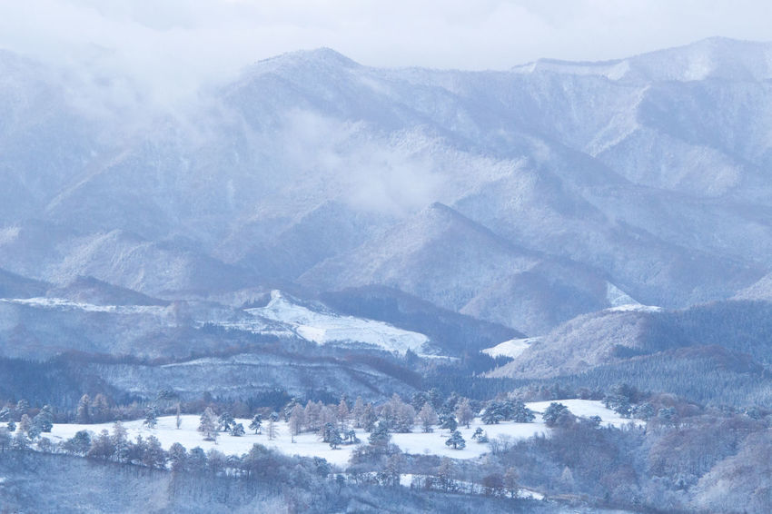 the first snowfall Landscape Morning Mountain Nature Pasture Snow Sunrise Winter