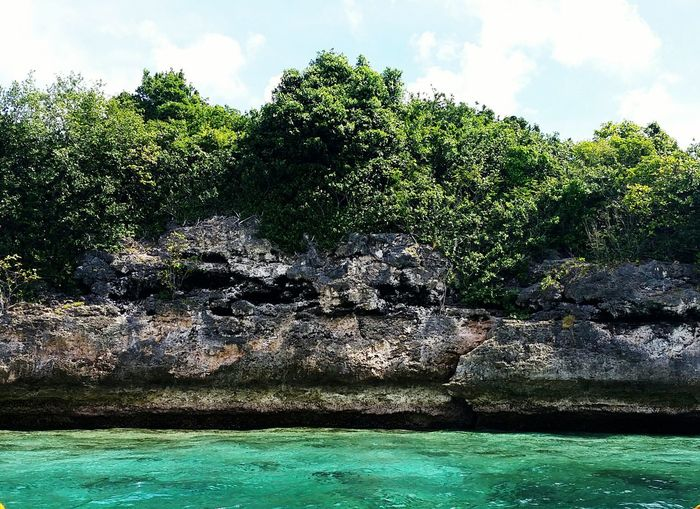 Pescador Island, Moalboal. Philippines Islandhopping Bigstoneformation Green Greenlife Naturelove