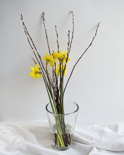 Beauty In Nature Bouquet Daffodil Easter EyeEm Best Shots Flower Flower Arrangement Flowers Flowers_collection Fragility Freshness Indoors  Lifestyle Lifestyle Photography Nature Nature Nature Photography Nature_collection No People Petal Spring Springtime Table Vase Yellow