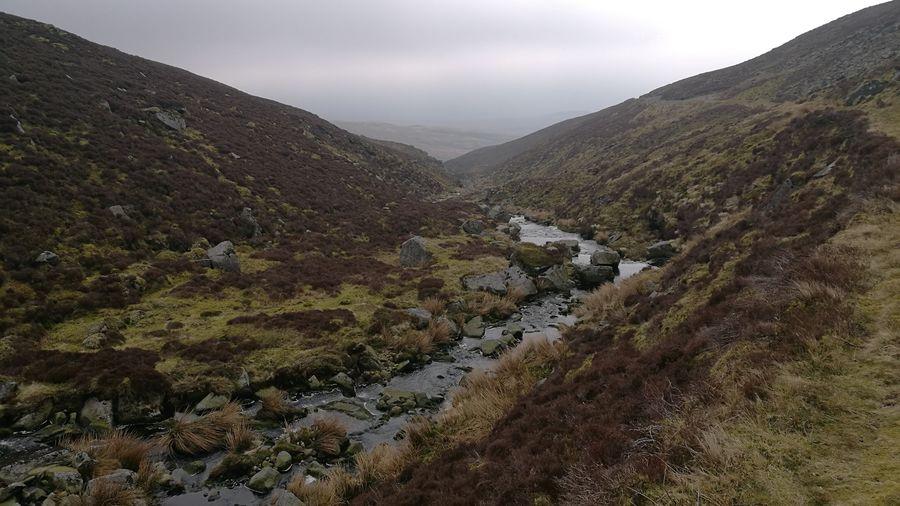 V Land Stream