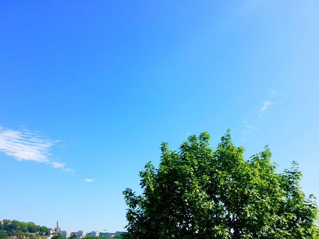 The Essence Of Summer Été Summer Summer 2016 ÉTÉ 2016 Sky Ciel Skyfie CIELFIE Paysage
