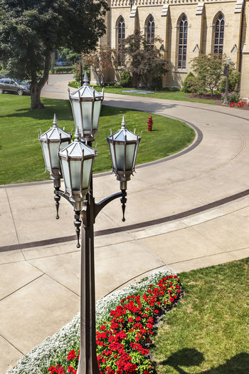 Color Blue Sky Campus Tree Culture Education Famous Green Knowledge Outdoor Religion Street Lamp Vertical Composition Cathedral Christian Green Grass Lawn Main Building Science And Technology Sunny Day Golden Tower Building University Of Notre Dame U\ USA
