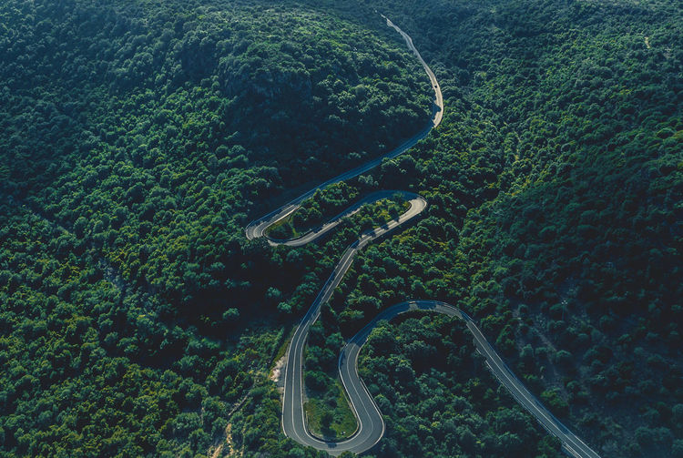 Road Above Aerial View Beauty In Nature Curve Day Environment Green Color Growth High Angle View Landscape Mountain Road Nature No People Outdoors Plant Road Scenics - Nature Street Tranquil Scene Tranquility Transportation Tree Winding Road My Best Travel Photo