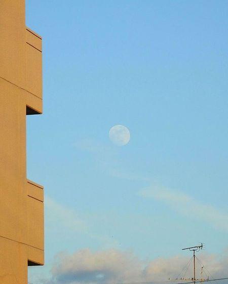 * 夕暮れのお月さまです😃🎵 It is dusk of a moon 😃🎵 * 風景 名古屋 眺め Landscape Vista 眺望 View Nagoya スナップ Japan 日本 Love_world Bestnatureshot 綺麗 景色 Nature 自然 爽やか Sky Igworldclub Follow Worldbestgram Aichi Beautiful Lov view_japan_nagoya_yama 🎶