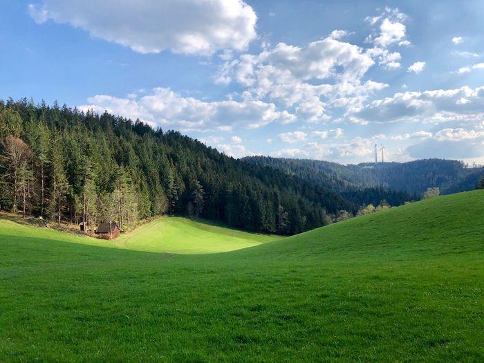 Schwarzwald Green Color Plant Grass Cloud - Sky Golf Scenics - Nature Sky
