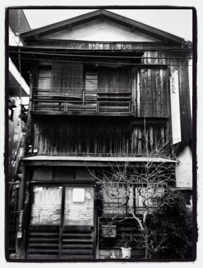 Tokyo Shibuyaku